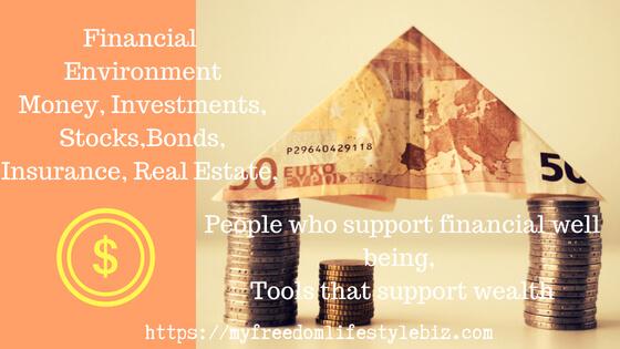 financial environemt
