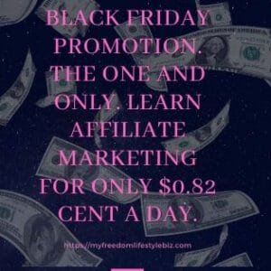 Black Friday Promotion better than ever