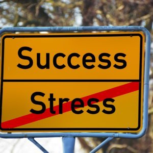 Is there success without stress